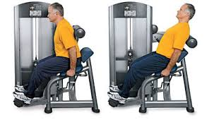 Image result for back extension