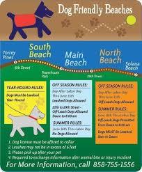 <b>Dog Friendly</b> Beaches | Del Mar, CA - Official Website