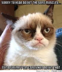 Sorry to hear about the sore muscles....... - grumpy cat Meme ... via Relatably.com