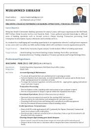 Resume Example Sales   Resume Maker  Create professional resumes