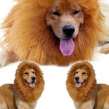 <b>Mane Dog</b>