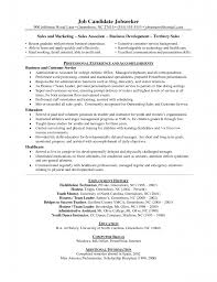 car sman resume job description this functional resume and car job description for a s associate inbound s jobs s assistant car sman manager job description