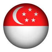 Image result for singapore flag button
