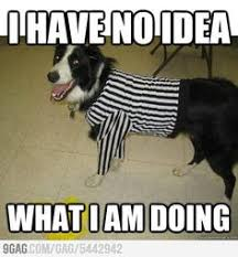 NFL-replacement-ref-meme-16 | Things that make me LOL :-D ... via Relatably.com