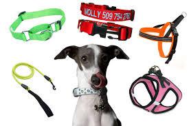 Best <b>Collar</b> & <b>Leash</b> for a <b>Puppy</b>: <b>Dog</b> Leashes & <b>Collars</b>