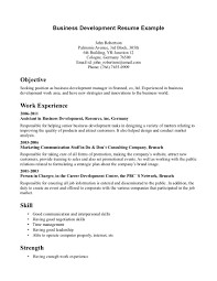 Digital Marketing Resume  digital marketing resume digital       resume for marketing BeBusinessed
