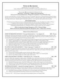 best resume executive summary the resume executive summary examples sample resume executive