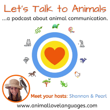 Let's Talk to Animals