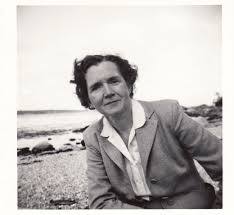 the last word on nothing why rachel carson still matters on monday the trump administration instructed u s environmental protection agency staffers to ze all of the agency s grants and contracts cutting off