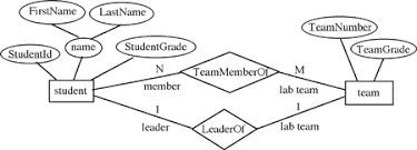 database developmententities student and team and their attributes and relationships from er diagram  figure    of module  quot entity relationship model quot