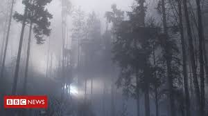 Rendlesham Forest <b>UFO</b>: Are we any closer to the truth 40 years on ...