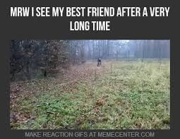 My Best Friend Memes. Best Collection of Funny My Best Friend Pictures via Relatably.com