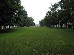 <b>Lawn</b> - Wikipedia