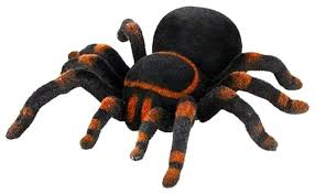 <b>Радиоуправляемый робот-паук Cute</b> Sunlight Toys Тарантул 781