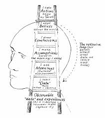 why climbing the ladder could be bad for your career and your ladder of inference