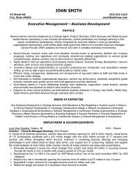 images about best executive resume templates  amp  samples on        images about best executive resume templates  amp  samples on pinterest   executive resume template  project manager resume and sales resume