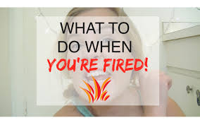 what to do when you get fired what to do when you get fired