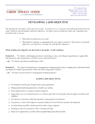 put resume objective