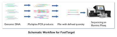 genesky bio tech targeted sequencing cnv detection snp 1 project consultation and experimental design including candidate targeted region evaluation and selection 2 design synthesize and optimize easytarget