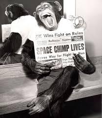 「mercury redstone 2 monkey」の画像検索結果