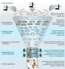 Online database aims to collect  organize research on cancer     A schematic illustrates