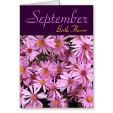 Image result for september flower images