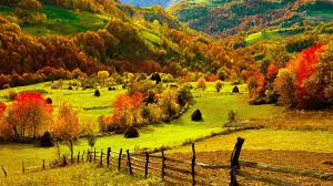 Image result for bright nature pics