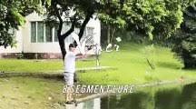 Lifelike <b>Fishing Lure Multi</b> jointed <b>bait</b> - video dailymotion