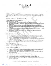 resume examplephysician cv sample resumes insurance underwriter bank loan officer resume s officer lewesmr best mortgage processor resume senior mortgage loan processor resume