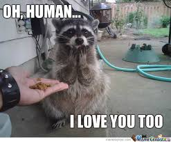Beautiful Love Story... by hyperbubblesxd - Meme Center via Relatably.com