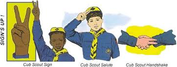 Image result for cub scout colors