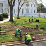 There's a Sinkhole at the White House. Blame the Swamp. (Really.)
