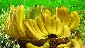 Resultado de imagem para banana