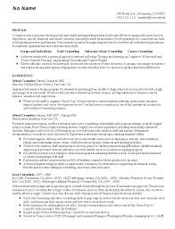 resume examples  examples of a professional resume cover letter        examples of a professional resume for profile with experience as school counselor