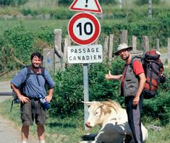 [Peter Coffman and Oliver Schroer]. Peter and Oliver (with cow) in France. Photo by Diane Laundy. - passage_canadien