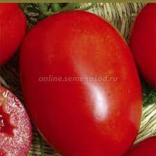 <b>Томат Ударник F1</b>, купить в Москве, <b>томат</b> с доставкой по России