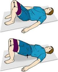 Image result for Resistance band squats and hip bridges, and Side Lying Clams