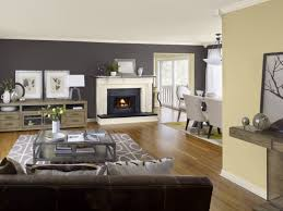 wall color enchanting interesting colors  cutest top living room paint colors in interior design for house with