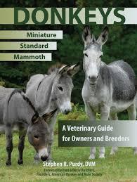 burros in