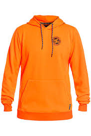 <b>Худи DC SHOES</b> Snowstar