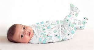 <b>Конверт Summer Infant</b> SwaddleMe Footsie — Автодети
