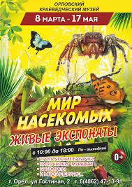 """Открытие выставки """"Мир <b>насекомых</b>. <b>Живые</b> экспонаты ..."""