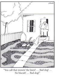 far side comic of a dog mwing the lawn badly
