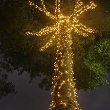 <b>Waterproof 10m to 100m</b> 220V 110V Fairy String led Lights Home ...