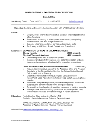 resume examples for experienced professionals sample resumes for    resume examples for experienced professionals sample resumes for it professionals gallery photos