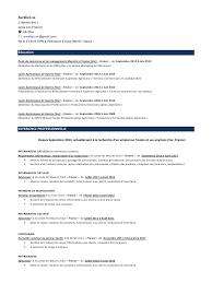 cv format canadien sample customer service resume cv format canadien standard uscanadian resume format workpermit cv format canadienpdf par aur233 lien