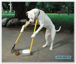 Afbeeldingsresultaat voor hondenpoep tekening
