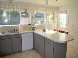 Small Picture spray painting kitchen cabinets 6 inspiration gallery from many