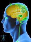neurotechnological