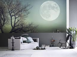 Wall Mural Designs Wall Mural Design Ideas For Bedroom Wall - Bedroom wall murals ideas